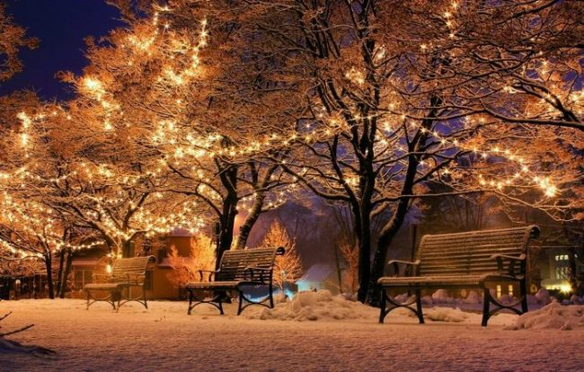 Decreto Natale: FAQ
